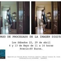 web CURSO PROCESADO